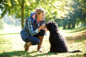 Natural Solutions for Dog Allergies | Natural Paws